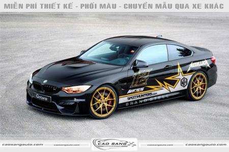 Tem xe BMW đen xám